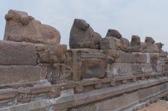 Shore temple in Mamallapuram,  India. Shore temple in Mamallapuram, Tamil Nadu, India Stock Image
