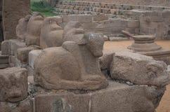 Shore temple in Mamallapuram,India. Shore temple in Mamallapuram, Tamil Nadu, India Stock Image