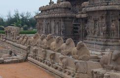 Shore temple in Mamallapuram,  India. Shore temple in Mamallapuram, Tamil Nadu, India Royalty Free Stock Image