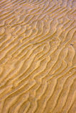 Shore texture and curved line in rio de la plata Royalty Free Stock Image