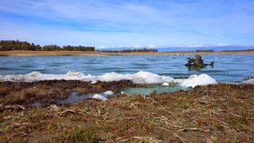 Shore of the Valdecañas reservoir contaminated by dead green algae and white foam