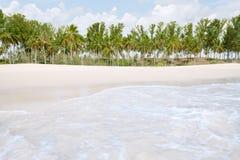 Shore Royalty Free Stock Image