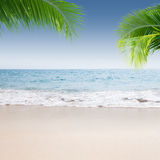 Shore Stock Images