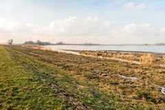 Shore of a wide creek in a nature reserve during the winter seas. Shore of a wide creek in a Dutch nature reserve during the winter season. After the high water Royalty Free Stock Photos