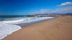 Shorebirds ακτοτουρλιών στην παραλία λόφων Surfers Ventura νότια Καλιφόρνια ΗΠΑ στοκ φωτογραφίες με δικαίωμα ελεύθερης χρήσης