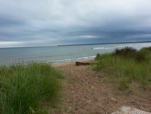 shoreline Stockbild
