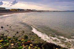 Shoreline Stock Photography
