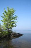 shoreline Arkivbild