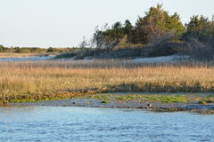 shoreline Immagine Stock Libera da Diritti