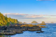 Shoreline alla traccia pacifica selvaggia in Ucluelet, isola di Vancouver, B Fotografia Stock Libera da Diritti