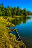 Shoreline along McLean Creek Provincial Recreation Area. Alberta, Canada with forest reflection Royalty Free Stock Image