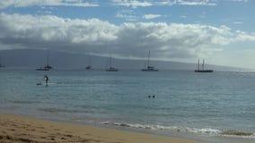 Shoreline av en Maui, Hawaii strand under sommar stock video