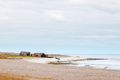 Shoreline av Gotland, Sverige royaltyfri foto