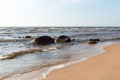 Shoreline of Baltic sea beach with rocks and sand dunes. Under clouds Stock Images