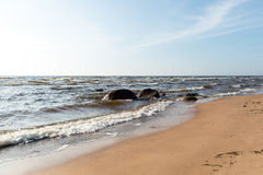 Shoreline of Baltic sea beach with rocks and sand dunes Royalty Free Stock Photo