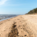 Shoreline of Baltic sea beach with rocks and sand dunes Royalty Free Stock Image