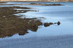 Shoreline Banks at Low Tide Royalty Free Stock Photo