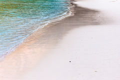 Shoreline on the beach Stock Photography