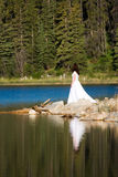 Shoreline Bride Royalty Free Stock Image
