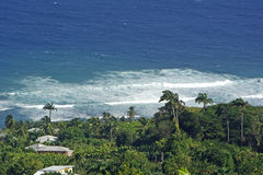 Shoreline in the Caribbean. Waves along the shore in the Caribbean Royalty Free Stock Photos