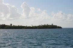 Shoreline. Of Caye Caulker, Belize Stock Image