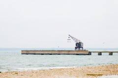 Shoreline con il pilastro e la gru durante l'autunno fotografia stock libera da diritti