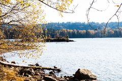 Shoreline del parco lunatico della traccia del porto immagini stock