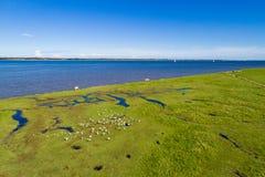 Shoreline e campi verdi con un cielo blu Fotografia Stock