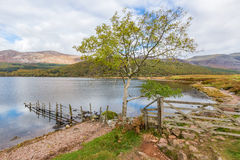 Shoreline of Ennerdale Water in Cumbria Royalty Free Stock Photography