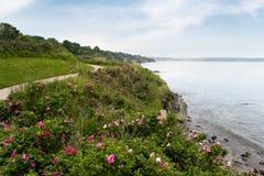 shoreline för önewport rhode Fotografering för Bildbyråer