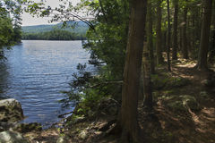 Shoreline and fresh water of Mountain View Lake, New Hampshire. Royalty Free Stock Photography