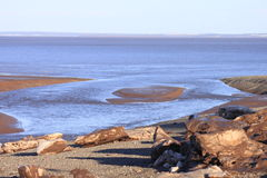 Shoreline iceburgs. Shoreline of the bay of fundy lined with washed in iceburgs Stock Photos