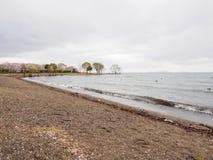 Shoreline of Lake Biwa on a rainy day, Nagahama, Japan stock photography
