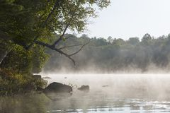 Misty morning on a lake in late summer - Ontario, Canada. Shoreline of a lake on a misty morning in late summer - Haliburton, Ontario, Canada royalty free stock images