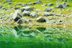 Shoreline Lake Reflection Stock Image