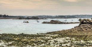 Shoreline at low tide, Brittany, France Royalty Free Stock Photography