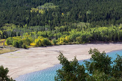 Shoreline of Lower Two Medicine Lake Stock Image