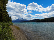 Shoreline of Maligne Lake on a Sunny Day Royalty Free Stock Photos