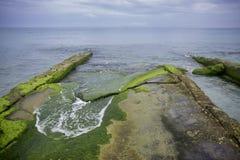 Shoreline with mossy rocks in East Havana beach, Cuba Stock Photography