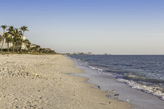 Shoreline in Naples, Florida Royalty Free Stock Images
