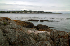 Shoreline near Victoria BC Canada Royalty Free Stock Photography