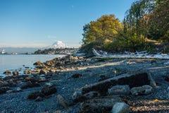 Shoreline och mer regnig 8 Royaltyfri Fotografi