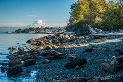 Shoreline och mer regnig 7 Fotografering för Bildbyråer
