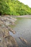 Shoreline och träd med havet på den naturliga sylten i Panama Royaltyfria Foton