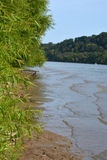 Shoreline. Of the Ohio river lined with greenery Royalty Free Stock Image