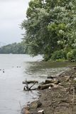 Shoreline of the Ohio River. A section of the shoreline of the Ohio river at Parkersburg West Virginia showing the driftwood and debris that litters the sand stock photography