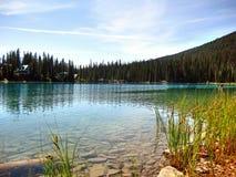 Shoreline på Emerald Lake Royaltyfria Bilder