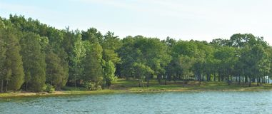 Shoreline panoramique Percy Priest Lake 8 images stock