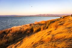 Shoreline Park under the sunset light, Mountain View, San Francisco bay area, California royalty free stock photography