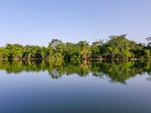 Shoreline Reflecting in the River. The beautiful blue of the sky and river with the green trees on the shoreline royalty free stock images